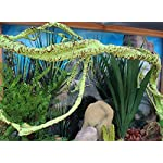 emours Easter Island Pharaoh Egypt Aquarium Fish Tank Ornament Reptile Habitat Decor 8