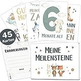 45 Baby Meilensteinkarten Lino für Junge und Mädchen Meilenstein Karten Set + Geschenkbox schöne Geschenkidee zur Geburt, Taufe oder Babyparty