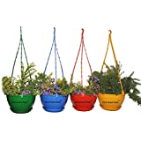 First Smart Plastic Hanging Pot (Multicolour, Pack of 4)