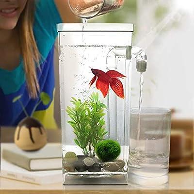 BABYS'q Selbstreinigendes Aquarium, Mini-Aquarium mit LED-Set, für Heimtextilien für Heimtextilien
