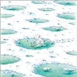 Poster 30 x 30 cm: Der kleine Eisbär beim Baden -