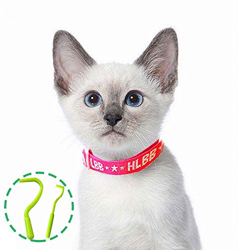 Pet cani e gatti flea & tick collare con essenza naturale botanico per il controllo di remedy repelling flea uovo mosquito pidocchi