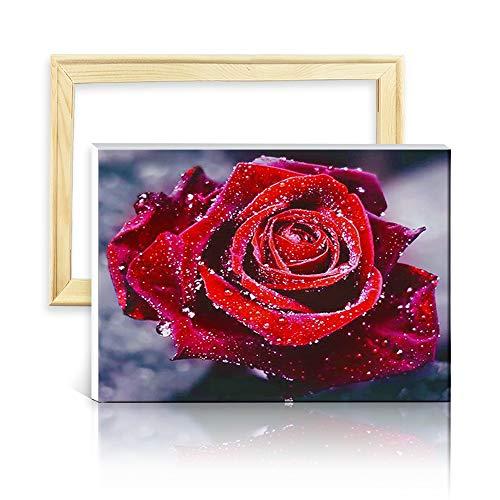 ufengke Rote Rose Blume 5D Diamant Malerei Set Mosaik DIY Diamond Painting nach Zahlen Kreuzstich Stickbilder, mit Holzkeilrahmen, Design 25x35cm