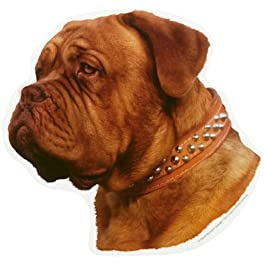 World Stickers schwandt casa Animale necessità di 13210 2 Pezzi Circa 140 X 160 mm per Warnschild Dogue De Bordeaux