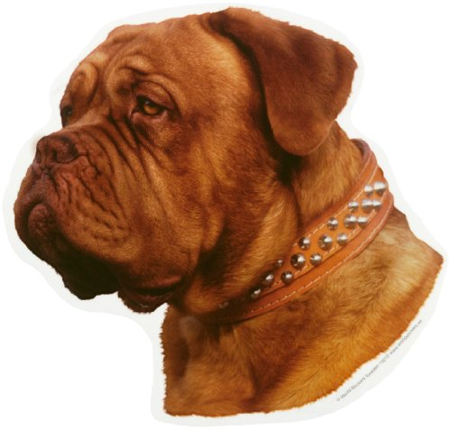 World-Stickers-schwandt-casa-animale-necessit-di-13210-2-pezzi-circa-140-X-160-mm-per-Warnschild-Dogue-De-Bordeaux