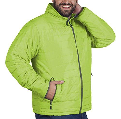 Promodoro Mens Padded Jacket C+ Aqua Limette