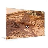 CALVENDO Lienzo Premium de 120 cm x 80 cm, Horizontal, un Motivo del Calendario Sahara Wüstentrekking, Imagen sobre Bastidor, Imagen Lista en auténtica Fennek (Zorro del Desierto) (calvento Lugar);