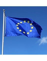 Retail Zone - Bandera de la Unión Europea (152 x 91,4 cm), color azul y amarillo