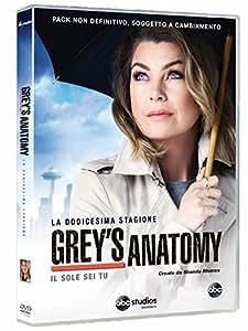 Grey's Anatomy 12 Stagione (6 DVD)