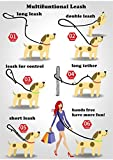Petcomer Smart 7 in 1 Multifunktions-Hundeleine Heavy Duty Einstellbare Durable Nylon 3M Reflektierende Material Hands Free Walking Training Laufen Leine für 2 Hunde (L:1″ Width,3.6Ft-6.6Ft, Grün) - 7