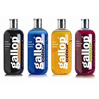 Carr & Day & Martin Gallop Colour Enhancing Shampoo, Black 11
