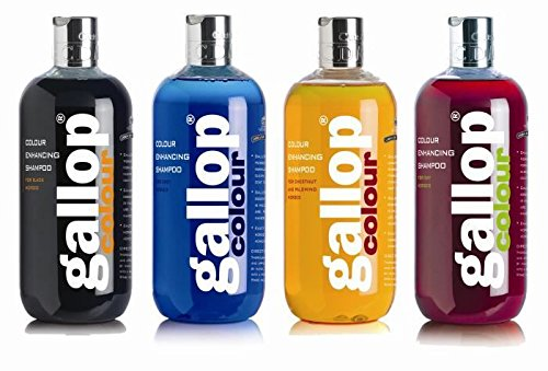 Carr & Day & Martin Gallop Colour Enhancing Shampoo, Black 1