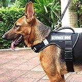 Adirigo No-Pull Hundegeschirr Atmungsaktiv Brustgeschirr für Hunde Einstellbar Outdoor, Reflektierendes Geschirr Sicher Kontrolle Gepolstert für Mittelgroße Bis Große Hunde
