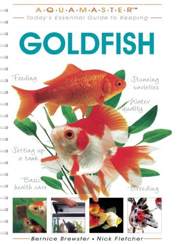 goldfish-aquamaster-by-bernice-brewster-2004-07-01