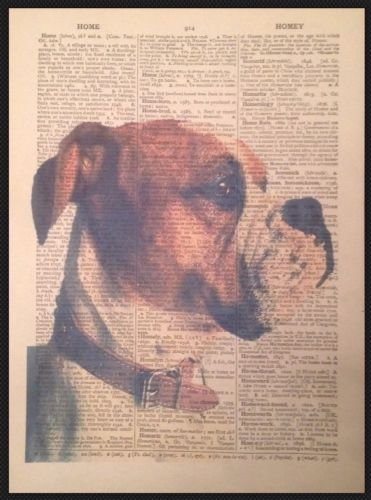 Parksmoonprints American Bulldog Dog Vintage Print Upcycled Dictionary Page Wall Art Picture