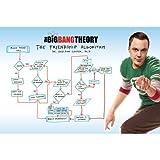 The Big Bang Theory-Maxi Poster algoritmo dell'amicizia