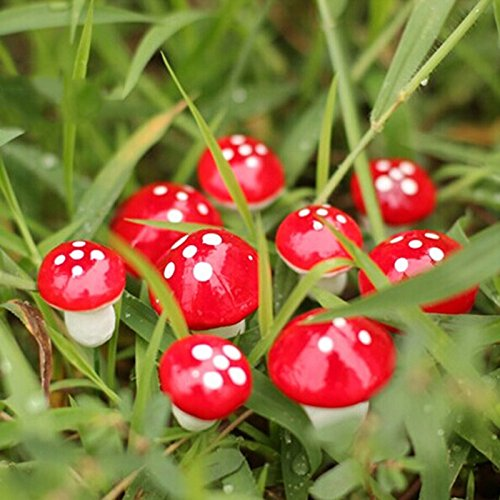 bestim-incuk-miniature-fairy-garden-mushroom-home-decoration-decor