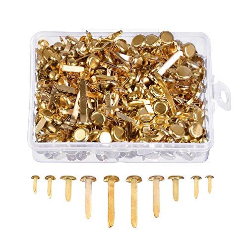500 Stück Papierverschlüsse Verschiedene Größen Runde Brad Messingbeschichtete Befestigungen Metall Brads mit Aufbewahrungsbox (Brads Mini Gold)