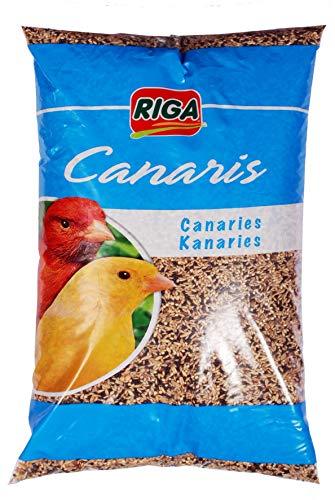 Riga - Miscela per Uccelli canarini, Confezione da 4 (4 x 1 kg)