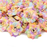 perfeclan 50x Regenbogen Blumenköpfe Streublumen Rosenköpfe Blumendeko DIY Blumenschmuck, aus Seiden