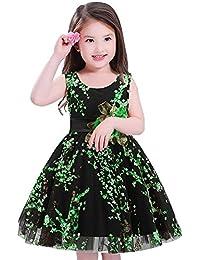 Byjia Children dress Fiore Ragazze Vestito Chiffon Nozze Festa Bambini  Principessa Gonna. 100-160 b0db460716e2