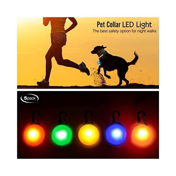 Pawaboo Dog Collar LED Light, [5 PACK] Weather Resistant Clip-on Dogs Cats Pets Collar Pendant Safety LED Lights Spotlights for Night Walking Camping, 3 Flashing Modes, Multicolor 2
