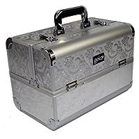 Geko 1-Piece Vanity Case/Makeup Box, Silver Leaf Design