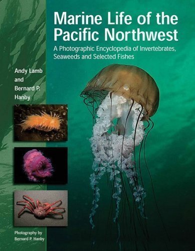 Marine Life of the Pacific Northwest: A Photographic Encyclopedia of Invertebrates, Seaweeds and Selected Fishes by Andy Lamb (Oct 1 2005)