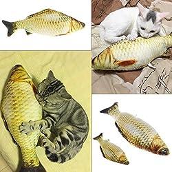 KatzenSpielzeug,Dairyshop Lustige Gras Karpfen Haustier Katze Kätzchen Fisch Form Interaktive Katzen Kauen Spielzeug, PP Baumwolle + Plüsch + Katze Minze, 7.88inch