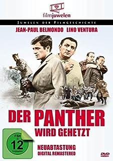 Der Panther Wird Gehetzt