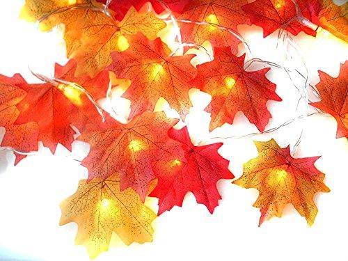 JMeet USB 20-LED-Lichterkette Weihnachts Thanksgiving Dekorationen Beleuchtete Herbst Fall Girlande, Festival Decor Ahorn Blätter Nachtlicht -