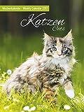 Wochenkalender Kazen - Kalender 2017 - Korsch-Verlag - Foto-Wochenkalender - 24 cm x 32 cm