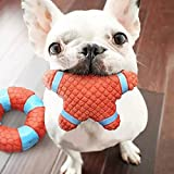 PnM Pet Dog Squeaky Star Toy Chew Toy Chew Squeaky Toy