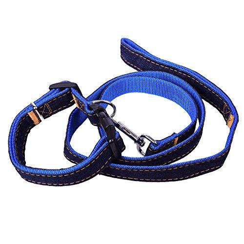 Preisvergleich Produktbild Stabiler Denim Hundeleine mit Halsband Set