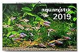 aquaristik Kalender 2019
