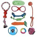 Hartz Pet Toys - Best Reviews Guide