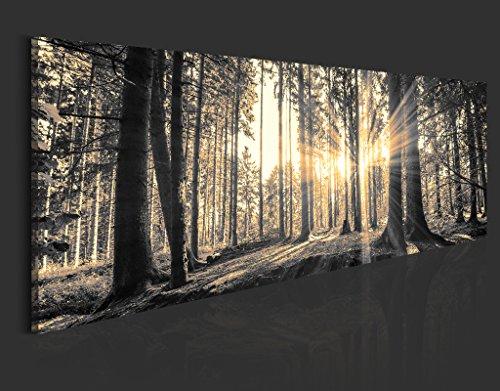 Neuheit! Modernes Acrylglasbild 135x45 cm - 1 Teile - 2 Formate zur Auswahl – Glasbilder – TOP - Wand Bild - Kunstdruck - Wandbild – Bilder - Wald Baum Natur Landschaft c-B-0077-k-c 135x45 cm - 5