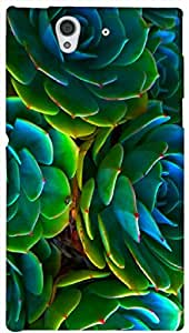 Timpax protective Armor Hard Bumper Back Case Cover. Multicolor printed on 3 Dimensional case with latest & finest graphic design art. Compatible with Sony L36H - Sony 36 Design No : TDZ-26190