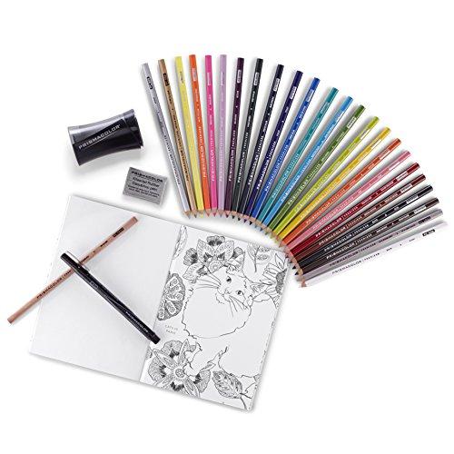 Prismacolor Premier Coloring Kit, 29 Pieces in Storage Box (1978739)