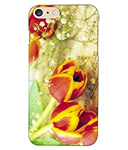APPLE I PHONE 7 PLUS Printed Cover By instyler