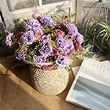 Xshuai Künstliche gefälschte Blumen Nelken, Xshuai bunte Blumen Hochzeit Braut Hortensie Party Girlanden Bouquet Decor Home Kunst Garten Blume Dekoration (D)