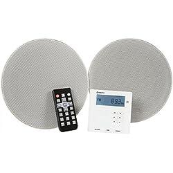 Adastra WA-210-SET Kit Complet amplificateur Mural et Haut-Parleur de Plafond Bluetooth