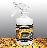 Fleck Stop Nano 0.5l Spray especial impregnación piedra natural sellado WS Nano +