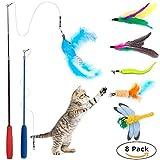Wineecy [8 in 1] Gato Juguete Interactivo Cat Varita, 2 Varita Retráctil con 6 Plumas de Ave, Libélula, Pescado para Gatos y Gatitos