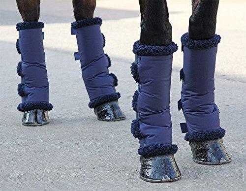 Transportgamasche (M) (Reiten Gepolstert Shorts)