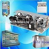 Gowe Air Cooled Air Chiller Brennwertgeräte für Eis Display Kühlung Schrank Supermarkt Obst und Gemüse Display Kühlschrank