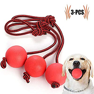 Legendog Dog Toys, Dog Balls Tough Dog Rope on Ball Dog Chew Toys Set for Small and Medium Dogs