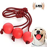 Legendog Dog Rope Ball, 3 Pcs Ball on a Rope Dog Toy Natural Elastic Solid Rubber Dogs Balls Chew Toys for Small Dogs