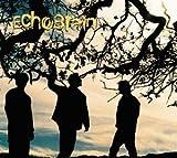 Songtexte von EchoBrain - Echobrain