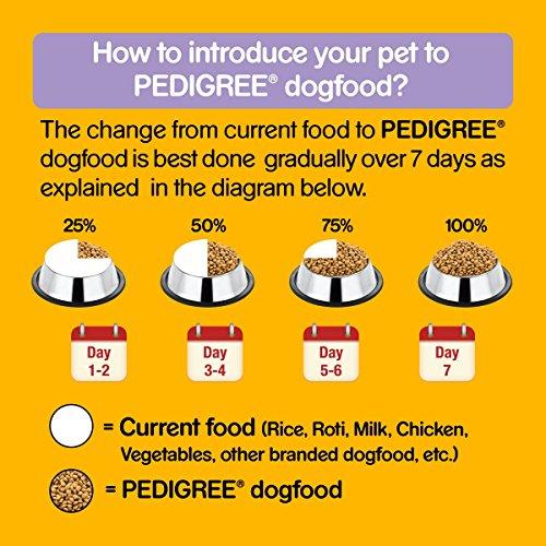 Pedigree Senior Dog Food Chicken & Rice, 1.2 kg Pack